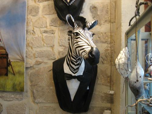 Zebra-in-tuxedo