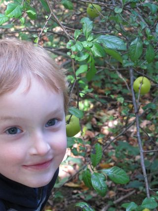 Luke-with-quince