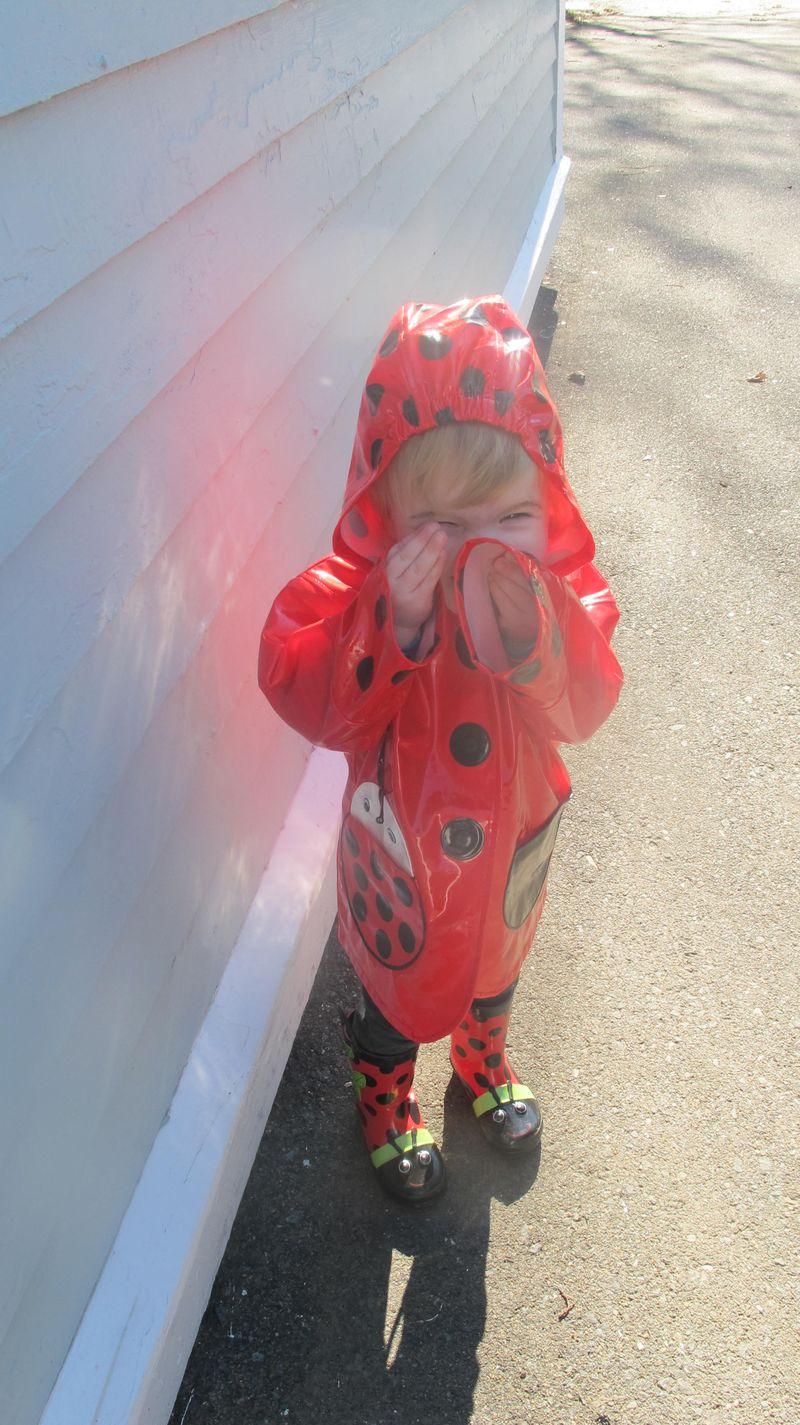 Vivi-ladybug