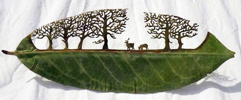 Lorenzo-duran-carved-leaves