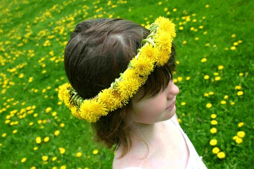 How-to-make-a-dandelion-crown