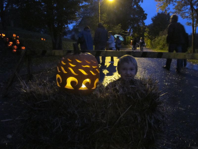 Welcome-to-the-pumpkin-patch