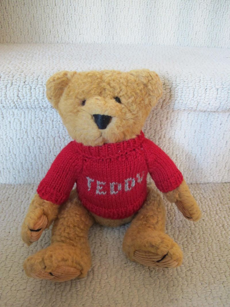 Teddy-in-his-sweater