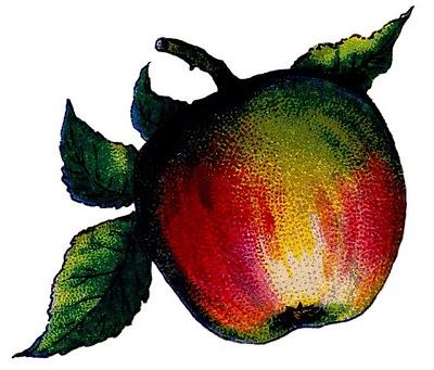 Victorian-apple