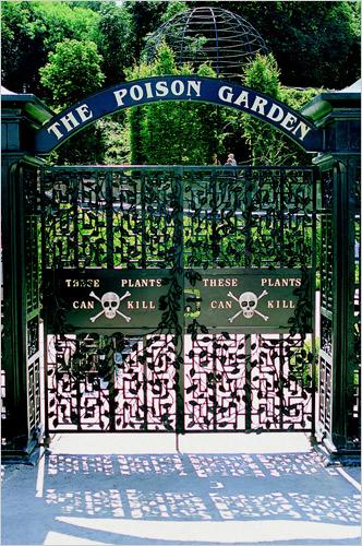 The-poison-garden