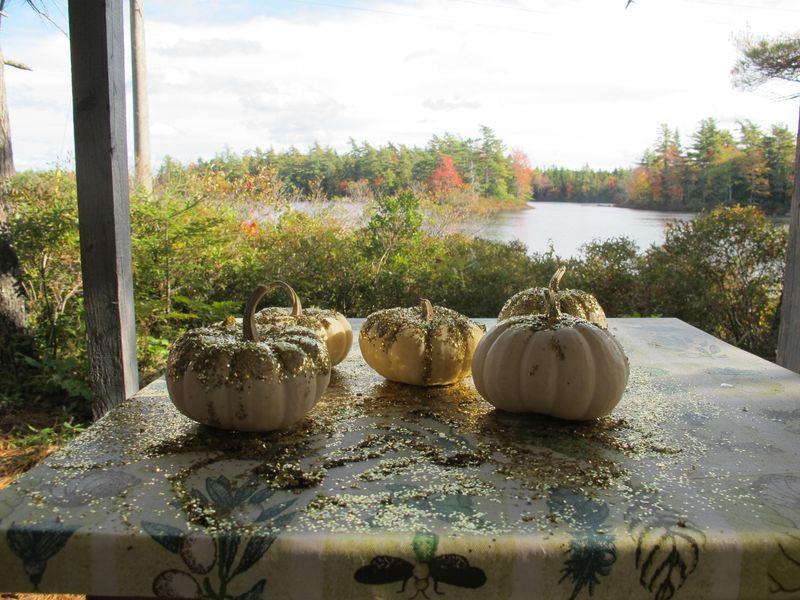 Glitter-pumpkins-6