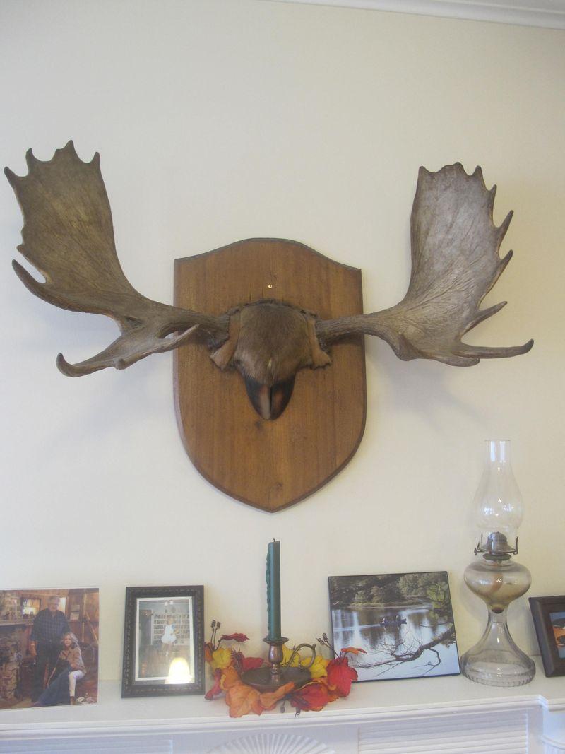 Milford-house-antlers