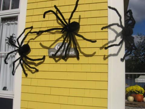 Spiderhalloweendecorationsforhouse3